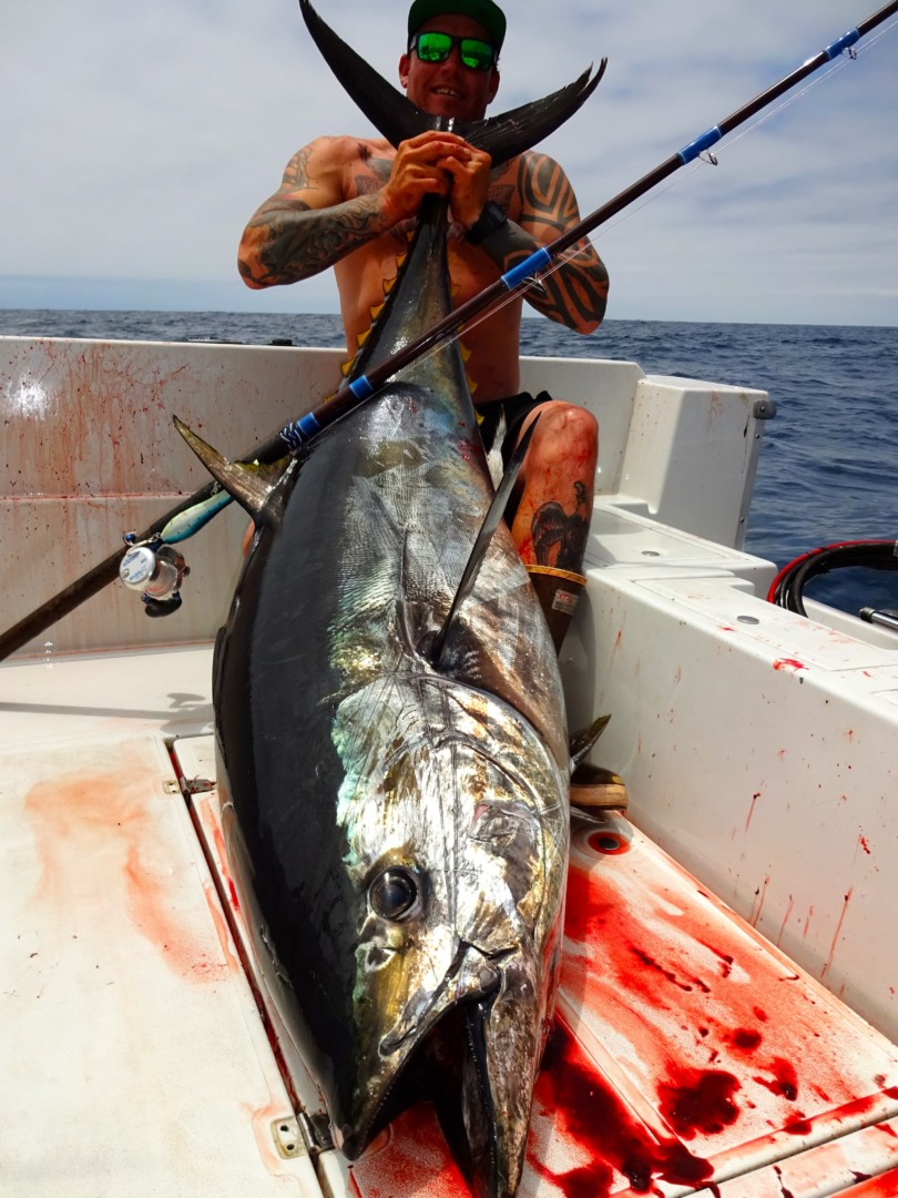 Poppers for Pelagics': West Coast Tuna Tackle – Accurate